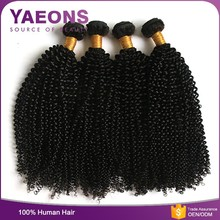 shedding free afro curly 100 human malaysian virgin kinky curly hair