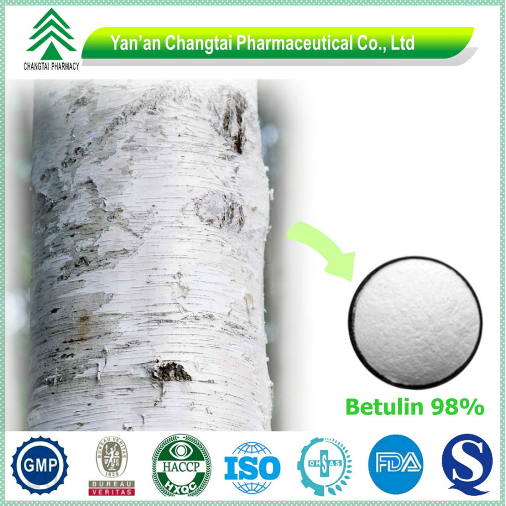 014 98% Betulin Betulinic Acid As Cosmetic Ingredients