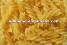 long macaroni type/pasta making machine macaroni plant