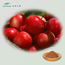 Nutramax Natural Apple Fruit Extract Powder and wood apple powder bulk in herbalt extract