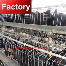 Wholesale Price chicken cage metal chicken cage build chicken coop with great price