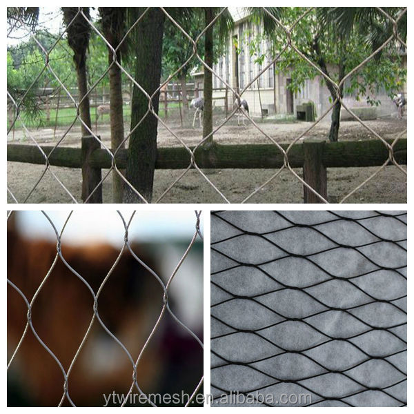 SS 304,316,316L Factory Agriculture wire mesh,X-Tend stainless steel cable mesh