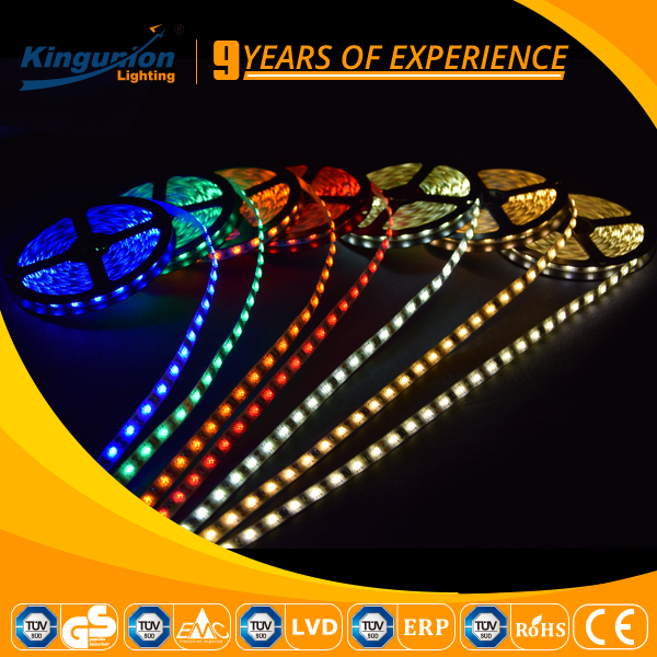 DC12V/DC24V LED strip 5050 3528 60D double row led strip with three year warranty