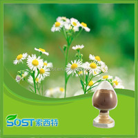 high quality pure natural chamomile extract
