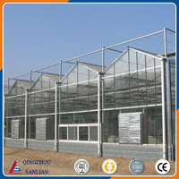 Glass Multi Span Venlo Agriculture Greenhouse