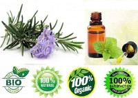 hair nourishing Rosemary Oil