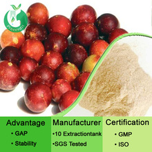 Fruit flavor powder fruit flavor powder organic camu camu powder