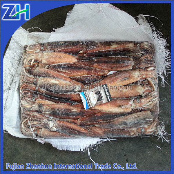 Frozen squid(illex), Zhoushan argentina squid export, best quality whole round illex squid