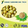 GMO FREE TOP Quality 100% Natural Soybean P.E. Powder