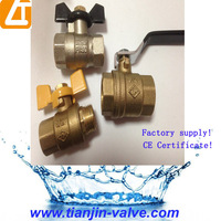 Free Sample China New 1/2-4 inch threaded brass filter ball valve with union end