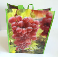 customized large size carrying non woven bags for vegetables,grapes fruits