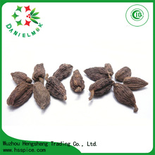Black Color Dried Style Cooking Spices Tsaoko Amomum Cardamom