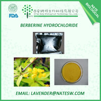 Professional Herbal Extract Factory Supply Berberine Hydrochloride/Rhizoma Coptidis Extract P.E/Coptis Chinens CAS No.: 633-65-8