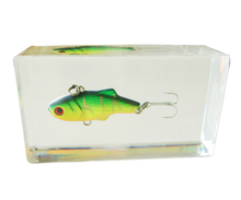 Fish Bait in Clear Acrylic Block