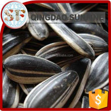 Confectionary agricultural sunflower seed