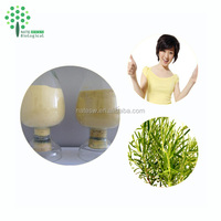 100% pure natural Rosemary extract/ Rosmarinus officinalis extract powder 20:1 low price