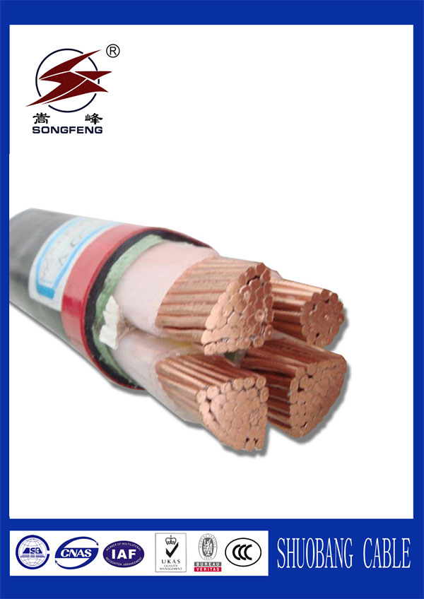 XLPE Insulation PVC Sheath Power Cable
