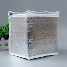 Disposable thermal cooler bag for frozen food delivery