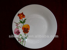 everyday used finr porcelain dinner service plate