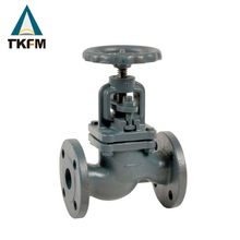 Alibaba best sellers steam gs-c25 flanged rf end globe valve ptfe 2 inch