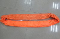 Polyester Round Sling 10 Ton Web Sling