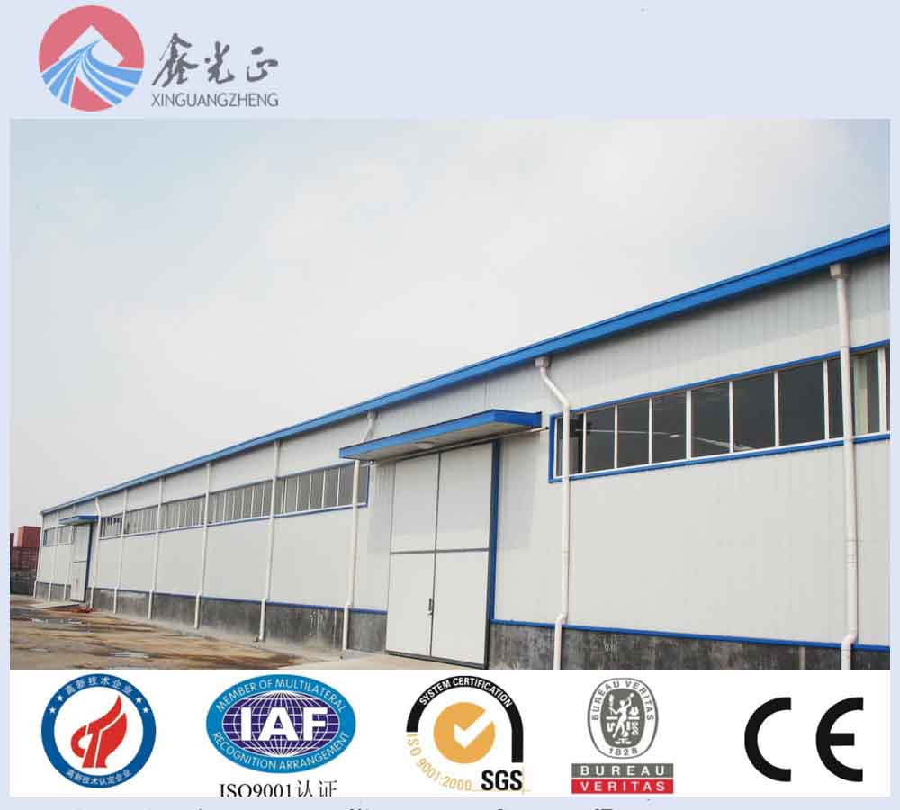 professional low cost prefab warehouse/warehouse building plans/fruit steel buidling for sale