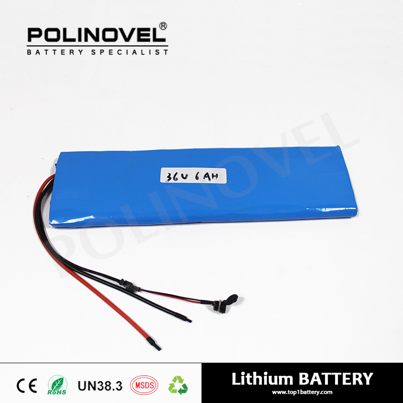 Customized lithium ion electric segway battery 36v 6ah