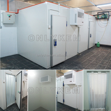Factory supply pvc curtain cold room, cold room panel machine, cold room insulation pu panel