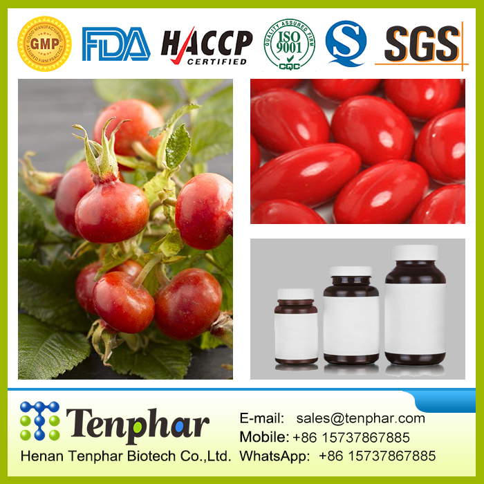 GMP Certificate 500mg Skin Care Rosehip Extract Hard Capsule
