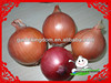 /product-detail/onion-in-mesh-bag-round-fresh-onions-chinese-fresh-big-onion-1563888330.html