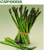 IQF FROZEN GREEN ASPARAGUS Vegetable made in China
