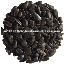 Indian nigella sativa seeds for oil extraction