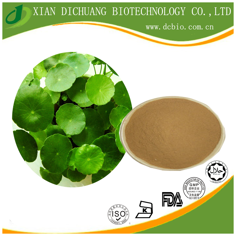 natural 10:1 Centella asiatica herb powder extract / gotu kola herb extract