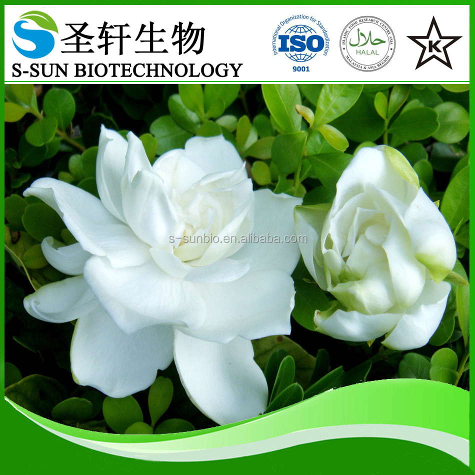Gardenia blue for colorant/ Organic Gardenia Blue Extract Powder