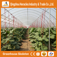 Heracles Factory price trade assurance geodesic dome plastic light deprivation greenhouse