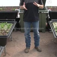 China Supply Commercial Hydroponics Vegetables Indoor