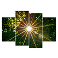 Sunlight Picture Prints Modern Canvas Wall Art/Wall Decor Tree and Sunlight Landscape Picture 4 panel for wholesale