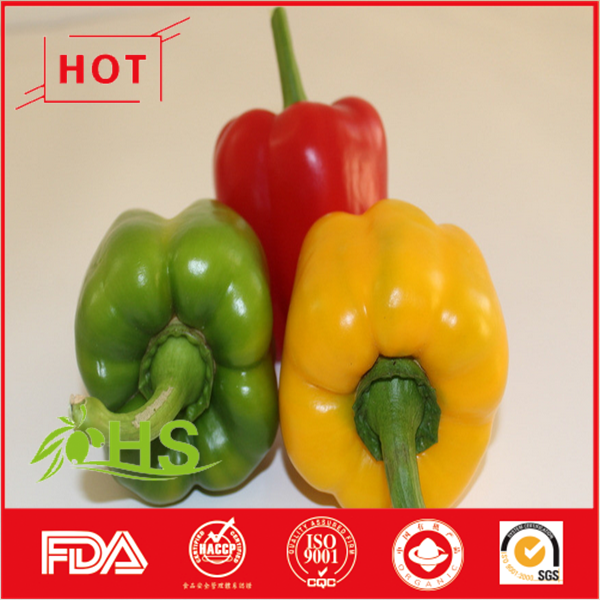 Organic bulk bell pepper for sale
