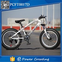 New Design Carbon Steel Seat Post Fat Tyre Bike Cheap Italian Design Tricycle With OEM Design