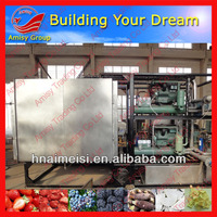 Fruit and vegetable AMS-FD10C vacuum freezer dryer price/ Freeze dryer horse milk processing line