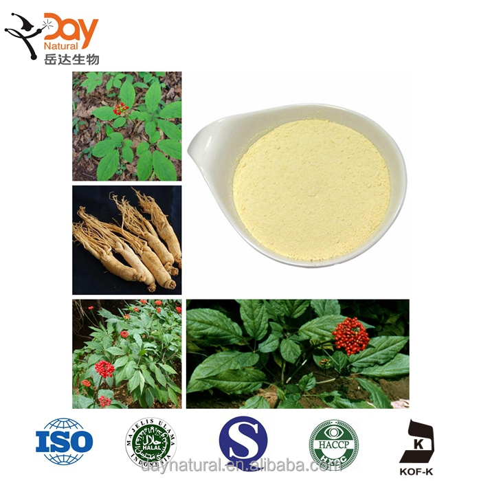 Radix Notoginseng Root Extract Powder ingredients ginsenosides Rb Supplements