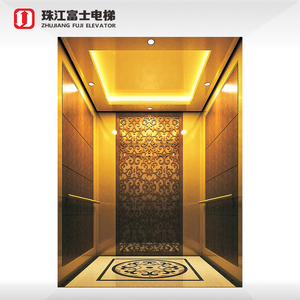 China Supplier Fuji Brand The Best And Cheapest AC Home Elevators cabin India