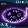 5050 300 SMD RGB Flexible Waterproof LED Strips, 12V DC/5m/Roll RGB Light with Remote Decoratio