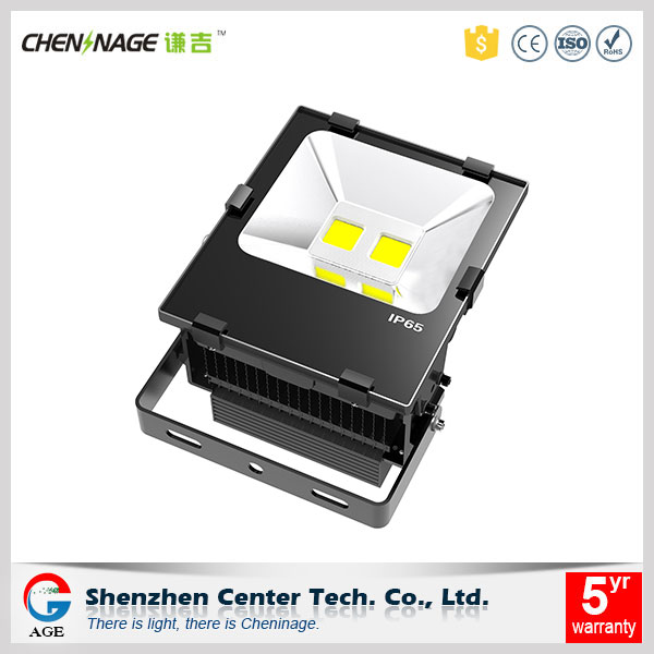 CE RoHS approved COB chip 100w LED flood light