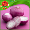 /product-detail/chinese-purple-onion-market-price-red-yellow-onion-60447246598.html