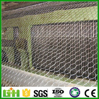 Hot Sale galvanized / pvc coated Chicken coop hexagonal wire mesh, dog hexagonal wire mesh
