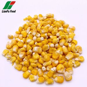 Premium quality air dried vegetables yellow corn for sale