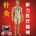 Durable Acupunture human model made of copper