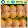 protective expanding packaging foam sleeve net