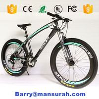 mountain bike/BMX adult bicycle/bike